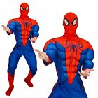 Adults Marvel Deluxe Muscle Chest Spiderman Outfit Superhero Fancy Dress Costume