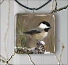 BIRD CHICKADEE BLACK CAPPED PENDANTS NECKLACE OR EARRINGS -pdj7X