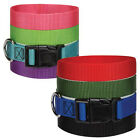 Nylon Dog Collar, Guardian Gear, USA Seller, 8 Colors 4 Sizes! Durable! Puppy