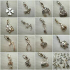 1  Tibetan silver lucky clip on charms  for charm bracelets 18 to choose from