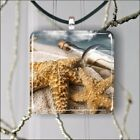 STAR FISH AND BOTTLE ON SANDY BEACH PENDANT NECKLACE 3 SIZES CHOICE -ilj7Z