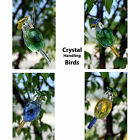 Light Reflection Crystals Hanging Crystal Birds Multi Faceted Pair Gift Pack