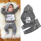Toddler Kid Baby Boy Girl Clothes Hoodies Tops Coat Sweatshirt Long Pants Outfit