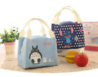 Cute Portable Thermal Lunch Bags for Women Men Multifunction Large Capacity Stor
