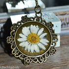 Real Daisy Necklace in Resin in round bronze setting - Handmade Flower Jewellery