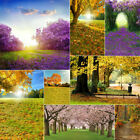 Nature Autumn Fall Forest Scenery Photography Background Backdrop Studio Props