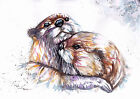 Print or Greeting Card Original Watercolour Otters by Be Coventry wildlife Art