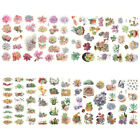 Cute Cactus Plants Succulent Stickers Adhesive Stickers DIY Decorative Sticker