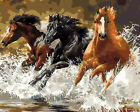 DIY Acrylic Paint By Number Oil Painting Supplies Wall Decor On Canvas Horses