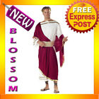 C25 Caesar Adult Roman Greek Julius Toga Costume Fancy Dress Halloween Outfit