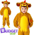 Kion Boys Fancy Dress Disney Lion Guard Animal Character Childrens Kids Costume