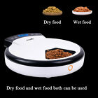 Auto Pet feeder HD Camera Voice 5 Meals 110V-220V 2.4GWifi Control By Phone