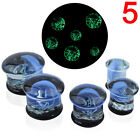 Jellyfish Flesh Tunnels Glass Saddle Ear Plugs Ring Gauges Earring Piercing FG