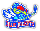 Columbus Blue Jackets NHL Hockey Logo Car Bumper Sticker - 9'', 12'' or 14'' $12.99 USD on eBay