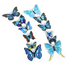 12 x PVC 3D Decal Mirror Butterflies Wall Stickers Home Decors
