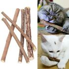 Внешний вид - 10-20X Treat Toy Dental Teeth Cleaning Pet Cat Chew Stick Matatabi Silvervine D