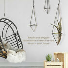 Air Plants Holder Hanging Geometric Planter Pot Indoor Home Garden Decoration