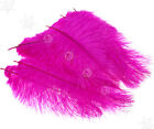 10pcs Large Ostrich Feathers 25-30cm Wedding Party Costume Mask Hat Craft