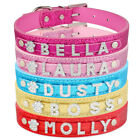 Bling Rhinestone Personalized Dog Cat Leather Collar Small Puppy Kitten Pet Name