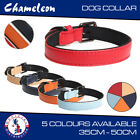 Strong Adjustable Leather & Neoprene Pet Collar for Dog or Puppy - 5 Colours