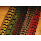 Hareline Ringneck Pheasant Tail Feathers - All Colors
