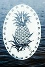 Pineapple Etched Glass Decal!
