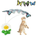 Funny Electric Rotating Pet Cat Toys Butterfly Bird Steel Wire Dog Teaser New