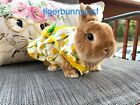 Bunny Harness and Leash Pineapple Dress for Rabbit Small Pet Rabbit Clothes Rabb