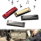 10-Holes Key C Blues Harmonica Musical Instrument Educational FunToy with Case