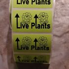 100 Green Live Plants Mailing Label stickers hand-made arrows up custom labels