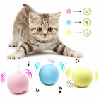 Cat Toys Interactive Ball Catnip Simulation Squeaker Product Toy For Cat Kitty