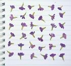 Rich Purple Cute Pressed Flowers with stems Resin Floral Card Making Materials