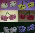24 x 2cm Foam Roses Flowers for Wedding Decoration, Cake, Craft, Card Making etc