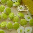 Green Yellow Ladybird 13mm Plastic Buttons Sewing Scrapbooking Collectable Craft