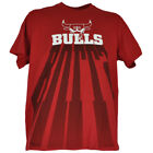 NBA UNK Chicago Bulls Shadow Letters Mens Adult Basketball Red Authentic Tshirt
