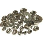 A2 Stainless Serrated Flange Nuts - M3 M4 M5 M6 M8 M10 M12