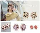 Fashion Womens Girls Beauty Flower Delicate Exaggerated Stud Allergy Earrings