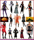 Ladies HALLOWEEN Witch Vampiress Devil Fairy Skeleton HORROR Fancy Dress Costume