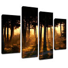 MSC070 Forest Tree Line Sunset Canvas Wall Art Multi Panel Split Picture Print