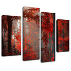 MSC259 Red Autumn Forest Canvas Wall Art Multi Panel Split Picture Print
