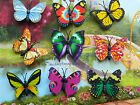 BUTTERFLY MAGNETS SET OF 2 or 5 BRIGHT ACRYLIC SMALL FRIDGE NOVELTY