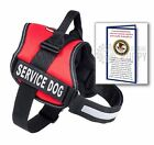 Service Dog Vest Harness PLUS 30 Premium ADA Info Cards, by Industrial Puppy