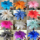Внешний вид - Wholesale 10-200 pcs high-quality natural ostrich feathers 6-24 inch/15-60cm