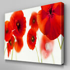FL207 Red Poppy Floral Canvas Wall Art Multi Panel Split Picture Print
