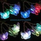 Fashion Butterfly Shaped 10LED String Lights Party Xmas Home Garden Fairy Decor