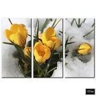 Floral Flowers In Snow   BOX FRAMED CANVAS ART Picture HDR 280gsm