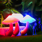 Night Light Lava Lamps Led Small Portable Mushroom Lamp Bedside Wall Hot Sale