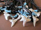 10 REAL TIGER SHARK TOOTH PENDANT CORD NECKLACE BLUE BEADS MEN WOMEN SURFER BOY