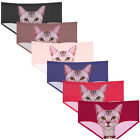 6 PACK Kitty Cat Panties Lasercut Hipster Underwear MULTICOLOR Solid Waistband