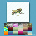 Beetle Bug Insect - Vinyl Decal Sticker - Multiple Patterns & Sizes - ebn1043